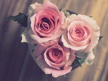 Hochzei, Blumen, Ringe